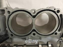14 15 16 XP1000 XP 1000 Rebuild Rebuilt Motor Complete Kit Big Bore Crank Hotrod